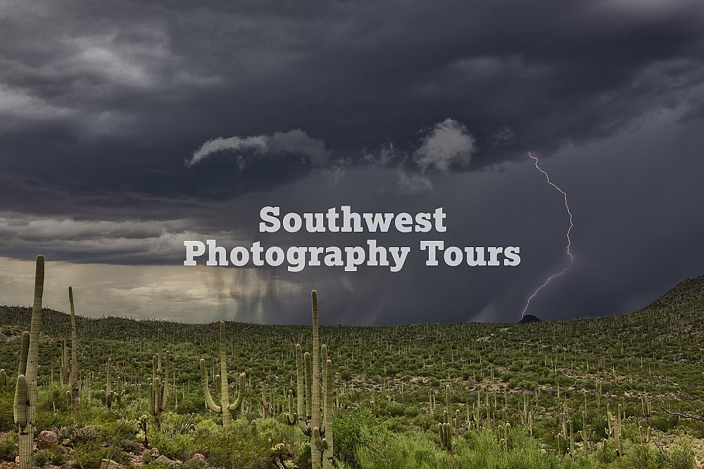 Saguaro Lightning Strikes